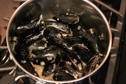 Steamed Mussels in White Wine Sauce  cooking planit review
